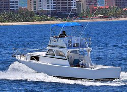 Custom 36' Fishing Charter